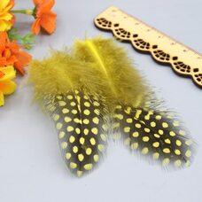 """Перья цесарки """"горох"""" 5-13 см. 20 шт. Желтый цвет"""