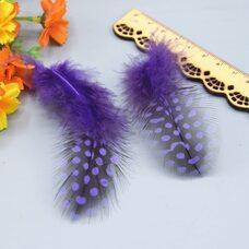 """Перья цесарки """"горох"""" 5-13 см. 20 шт. Фиолетового цвета"""