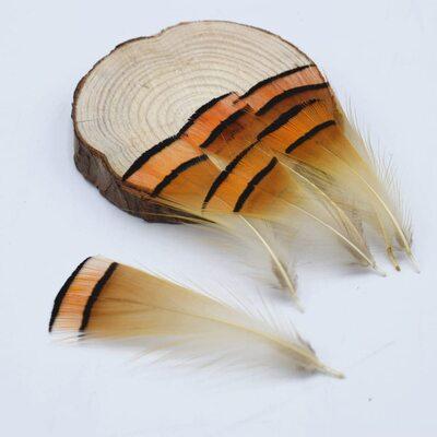 Перья фазана 4-6 см. 10 шт.