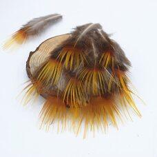 Перья фазана 5-7 см. c оранжевым кончиком. 10 шт.