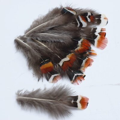Декоративные перья Pheasаnt 5-7 см. 10 шт.