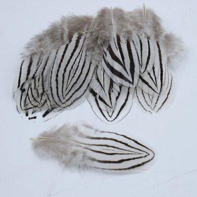 Декоративные перья серебряного Pheasаnt 4-7 см. 10 шт.