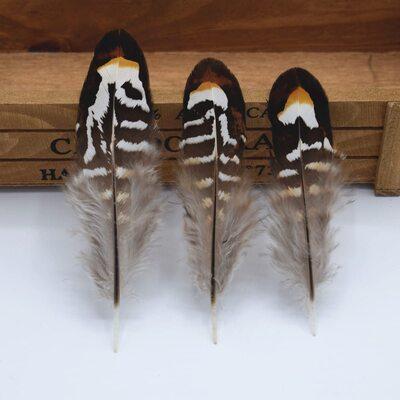 Декоративные перья Pheasаnt 7-10 см. Натуральный цвет. 10 шт.