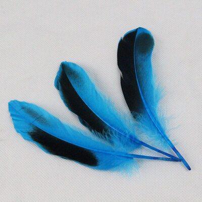 Перья утки 10-15 см. с отливом 10 шт. Голубой цвет