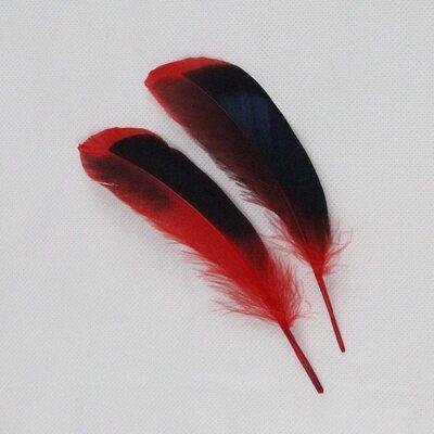 Перья утки 10-15 см. с отливом 10 шт. Красный цвет