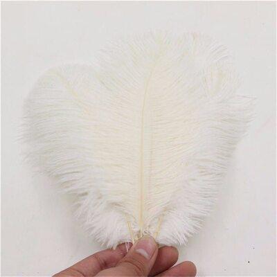 Перья страуса 15-20 см. Белый цвет
