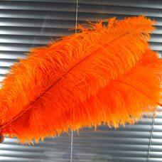 Премиум перья страуса 50-55 см. Оранжевый цвет