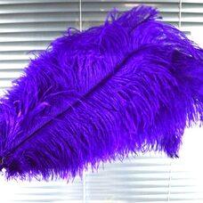Премиум перья страуса 50-55 см. Фиолетовый цвет