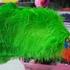 Премиум перья страуса 55-60 см. Салатовый цвет