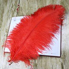 Премиум перья страуса 50-55 см. Красный цвет
