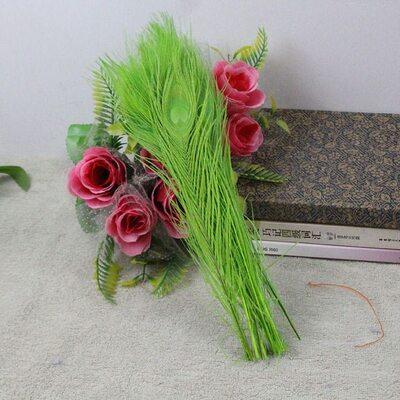 Цветные перья павлина 25-30 см. Салатовый цвет