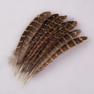 Перья фазана 10-15 см. 10 шт. Натуральный цвет