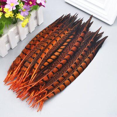 Перья алмазного фазана 23-28 см. 1 шт. Оранжевый цвет