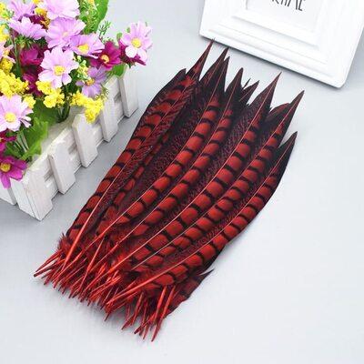 Декоративные перья алмазного Pheasаnt 23-28 см. 1 шт. Красный цвет