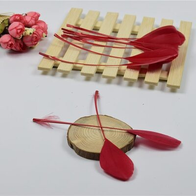 Перья гуся на ножке 13-18 см. 10 шт. Красного цвета