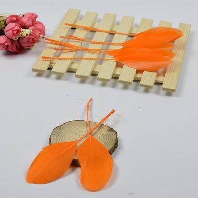 Перья гуся на ножке 13-18 см. 10 шт. Оранжевого цвета