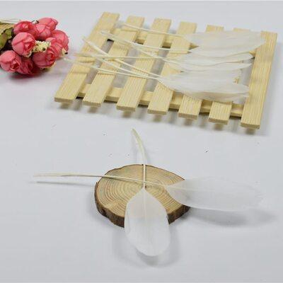 Перья гуся на ножке 13-18 см. 10 шт. Белого цвета