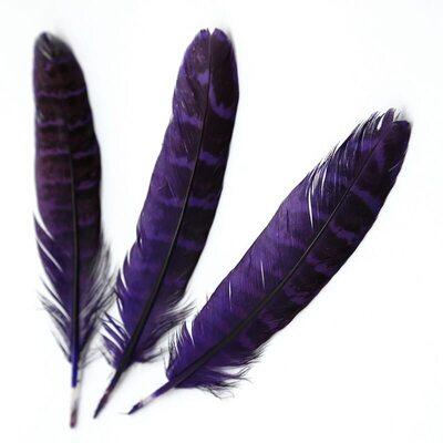 Перья фазана 10-15 см. 10 шт. Фиолетовые
