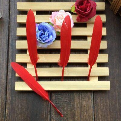 Перья утиные 10-15 см. 20 шт. Красный цвет