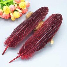 Перья цесарки 17-22 см. 10 шт. Красный цвет