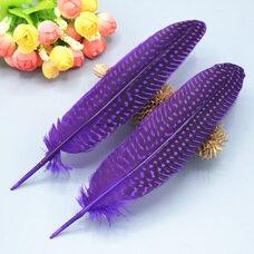 Перья цесарки 17-22 см. 10 шт. Фиолетовый цвет