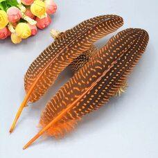 Перья цесарки 17-22 см. 10 шт. Оранжевый цвет