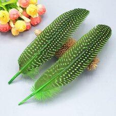 Перья цесарки 17-22 см. 10 шт. Зеленое яблоко