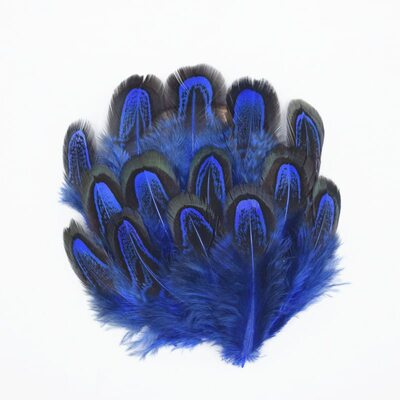 Декоративные перья Pheasаnt разноцветные 5-8 см. 10 шт. Синего цвета
