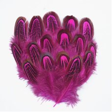 Перья фазана разноцветные 5-8 см. 10 шт. Фуксия