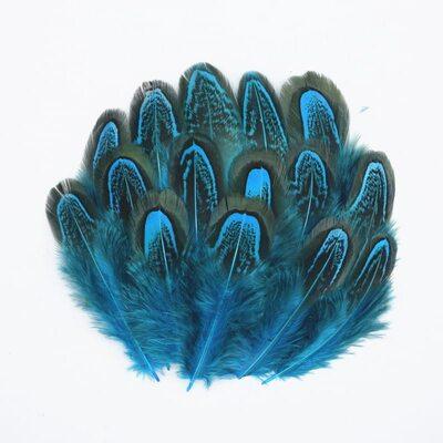 Декоративные перья Pheasаnt разноцветные 5-8 см. 10 шт. Голубые