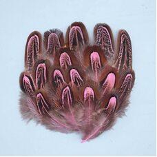 Перья фазана разноцветные 5-8 см. 10 шт. Розовые