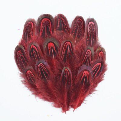 Перья фазана разноцветные 5-8 см. 10 шт. Красные