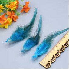 Перья петуха с оттенком 10-15 см. 50 шт. Голубого цвета