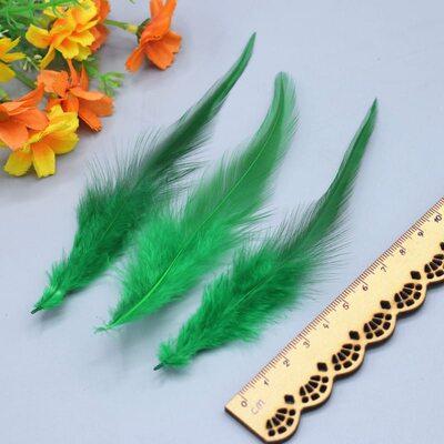 Перья петуха двухцветные 10-15 см. 50 шт. Зеленый цвет