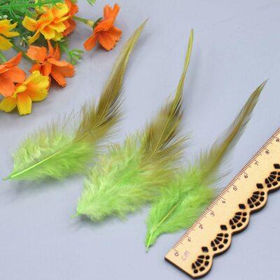 Перья петуха с оттенком 10-15 см. 50 шт. Салатовый цвет