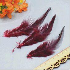 Перья петуха с оттенком 10-15 см. 50 шт. Красное вино