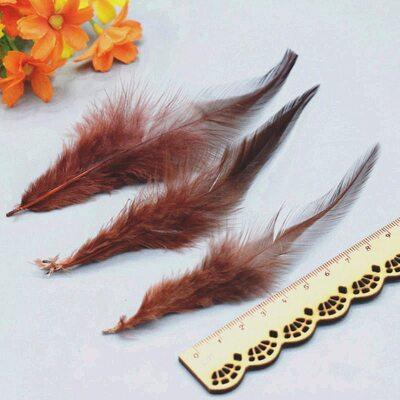 Перья петуха с оттенком 10-15 см. 50 шт. Коричневый цвет