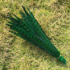 Перья фазана 30-35 см. Зеленые