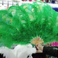 Большой веер из перьев страуса, 1 шт. - Зеленого цвета