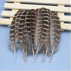 Декоративные перья фазана 10-15 см. 10 шт. Натуральный цвет