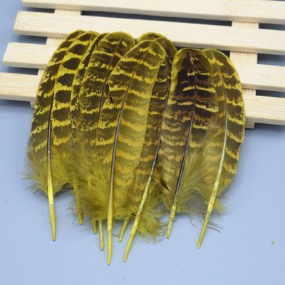 Декоративные перья Pheasаnt 10-15 см. 10 шт. Желтые