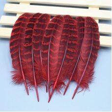 Декоративные перья фазана 10-15 см. 10 шт. Красные