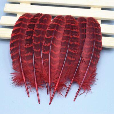 Декоративные перья Pheasаnt 10-15 см. 10 шт. Красные
