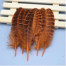 Декоративные перья фазана 10-15 см. 10 шт. Оранжевые