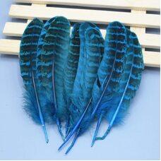 Декоративные перья фазана 10-15 см. 10 шт. Голубые