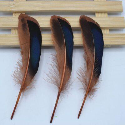 Перья утки 10-15 см. с отливом 10 шт. Кофейный цвет