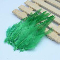 Перья петуха 10-15 см. 20 шт. Зеленый цвет