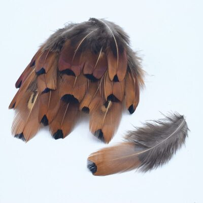 Перья фазана 6-10 см. 20 шт. Коричневый цвет