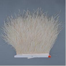 Тесьма из перьев страуса 10-15 см, 1м. - Шампань #53