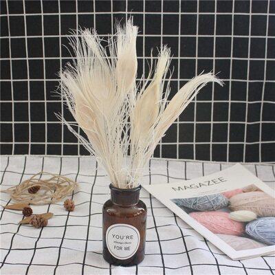 Цветные перья павлина 25-30 см. Белый цвет